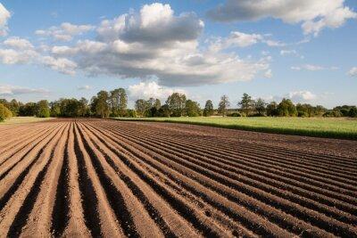 Bild Widok na zaorane Pfosten w piękny słoneczny dzień na wsi