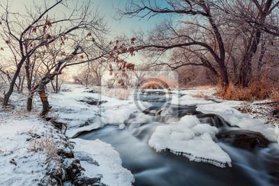 Winter forest. River Krinka (Ukraine)