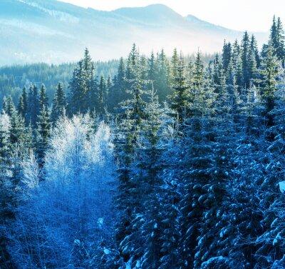 Bild Winter in den Bergen