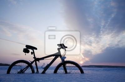 Winter-Reise