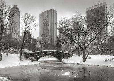 Bild Winter scene in Manhattan: the Pond, Gapstow Bridge and Manhatta