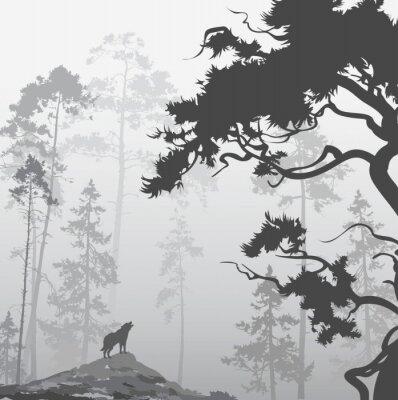 Bild Wolf im Wald