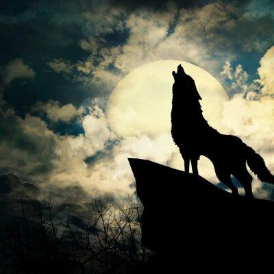 Bild Wolf in der Silhouette heulend auf dem Vollmond