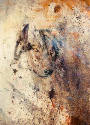 Bild Wolf Malerei, Farbe abstrakte Wirkung auf den Hintergrund