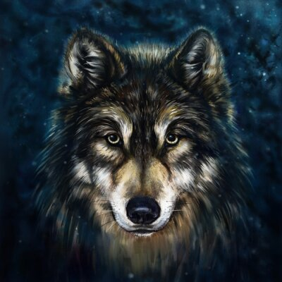 Bild Wolf vor