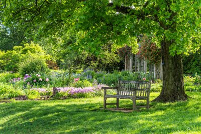 Bild wooden bench at flower garden park