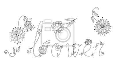 Wort Blume Aus Briefen Mit Blumen Hand Gezeichnet Schwarz Weiß