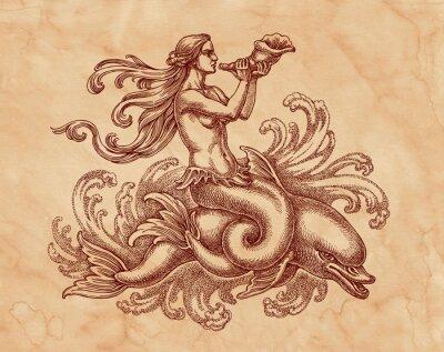 Bild Морская богиня на дельфине, графика. Рисунок на коричневой бумаге тушью.