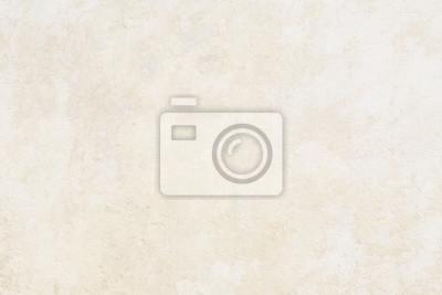 Bild 和 紙 背景 素材 - ベ ー ジ ュ