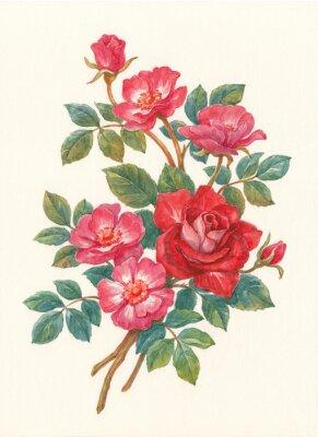 Bild Букет с цветами шиповника, акварель.