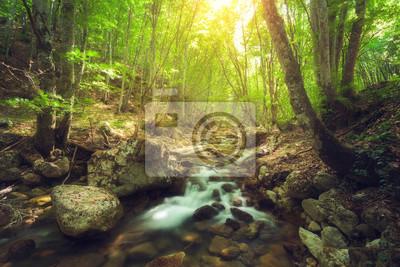 Fairy Bergwald am Fluss mit bunten Sonnenstrahlen im Frühjahr Morgen. Fantastische Landschaft mit Bäumen, grüne Blätter, Steine und verschwommenes Wasser bei Sonnenaufgang. Magische Wälder mit gelbe