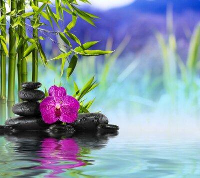 Lila Orchidee, Steine und Bambus auf dem Wasser