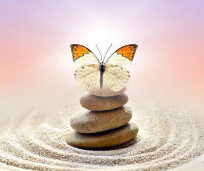 Bild Schmetterling und Steine Balance