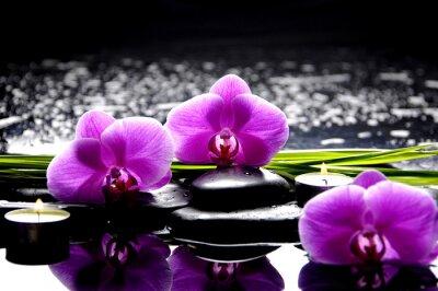Bild Spa Stilleben mit Satz von rosa Orchidee und Steine Reflexion