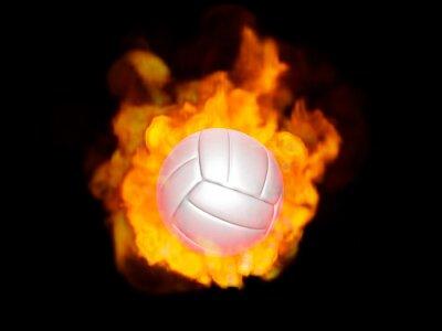 Bild 炎のバレーボール