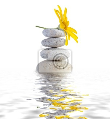 Zen Spa Steine mit Blumen