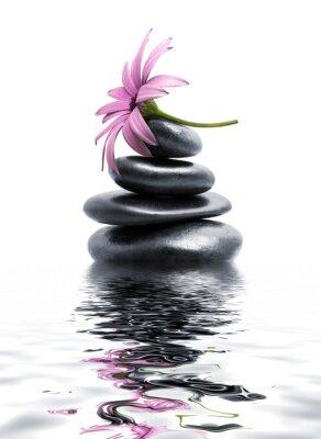 Zen Spa Steine mit lila Blume