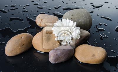 Bild Zusammensetzung der Kieselsteine mit einer weißen Blume