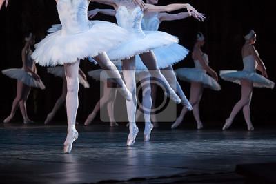 Zärtlichkeit, Agilität, Choreographie-Konzept. Tanz der kleinen Schwäne von vier attraktiven und anmutigen Ballerinen mit dünnen ästhetischen Beinen in hellrosa Pointe Schuhe