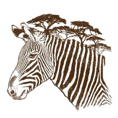 Bild Zebra mit Baum