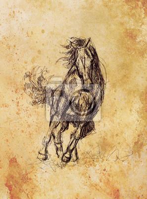 Bild Zeichnen Sie Bleistift Pferd Auf Altem Papier Und Alte Vintage