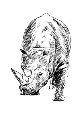 Zeichnung von einem Nashorn. Vektor-Illustration