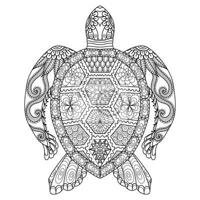 Zeichnung Zentangle Schildkröte Für Ausmalbilder T Shirt Design
