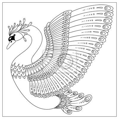 Zeichnung zentangle schwan zum ausmalen seite leinwandbilder ...