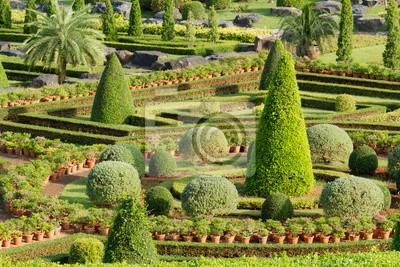 Bild Zierpflanzenbau Garten.