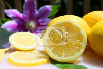 Zitronen im Sonnenschein