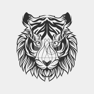 Bild Zusammenfassung Kopf Tiger Hand Zeichnen