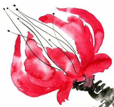 Bild Zusammenfassung rote Blume. Zeichnung Mohn. Aquarell und Tinte Illustration im Stil Sumi-e, u-sin. Orientalische traditionelle Malerei. Isoliert auf weißem Hintergrund.