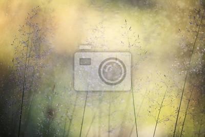 Zusammenfassung verschwommene sonnige Wiese mit Regentropfen Hintergrund. Selektiver Fokus verwendet.