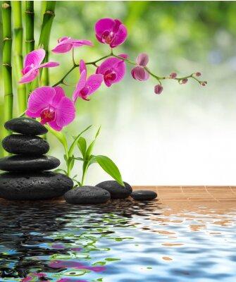 Zusammensetzung Bambus-lila Orchidee-schwarzen Steinen