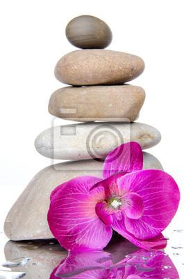 Bild Zusammensetzung von gestapelten Steinen mit einer purpurroten Blume