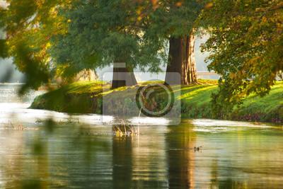 Zwei Herbst Bäume am Flussufer