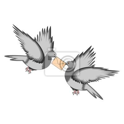 Zwei Tauben mit einem Buchstaben auf einem weißen Hintergrund