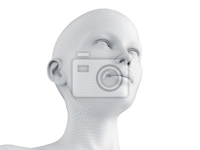 Fototapete 3d rendered medically accurate illustration of a female wireframe head