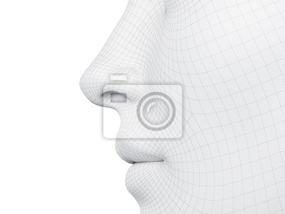 Fototapete 3d rendered medically accurate illustration of a wireframe nose