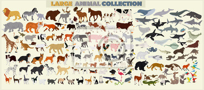 Fototapete A large set of animals of the world on a light background.