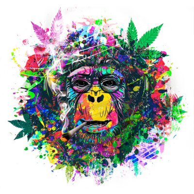Fototapete abstract colorful monkey background with funny face and cannabis