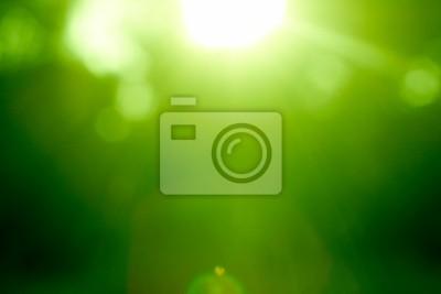 Abstrakt grünen Wald mit Sonnenstrahl defokussiert