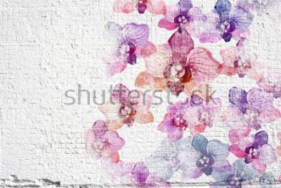 Fototapete Abstrakter weißer grunge Wandstuckhintergrund. Wandstuckbeschaffenheit mit buntem Aquarell blüht Orchideen.