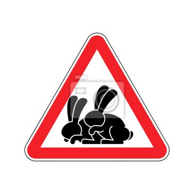 Achtung Kaninchen Sex Vorsicht Hase Hase Geschlechtsverkehr