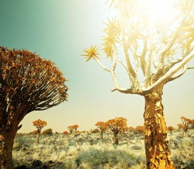 Fototapete Afrikanischen Landschaften