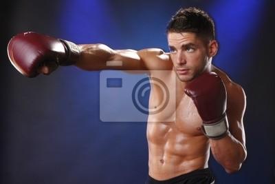 Aktion Boxer im Training Haltung