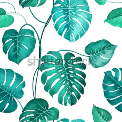 Fototapete Aktuelle Palmblätter über weißem, nahtlosem Muster. Vektor-illustration