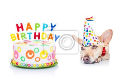 Alles Gute Zum Geburtstag Hund Fototapete Fototapeten Platzhalter