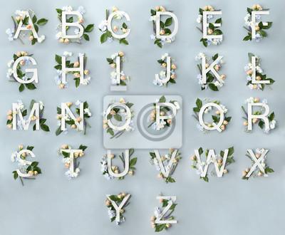Fototapete Alphabet mit Blumendekoration auf farbigem Hintergrund