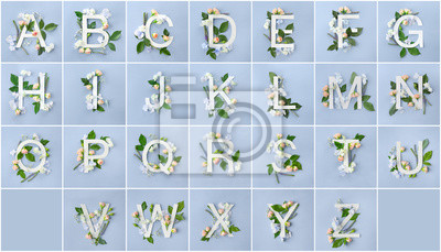 Alphabet with floral decoration on color background
